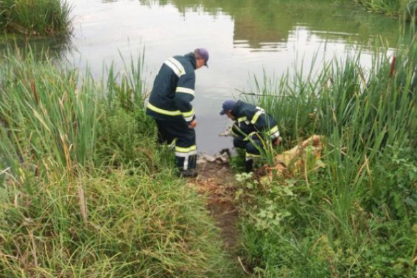 На Львівщині втопилася 63-річна жінка
