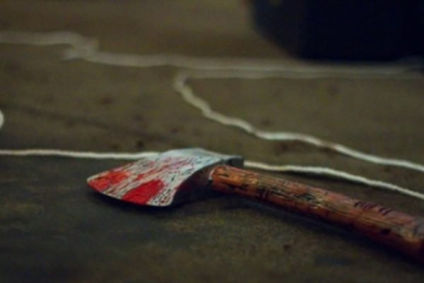 Зарубав сплячого сина сокирою. Вбивцю засудили на вісім років