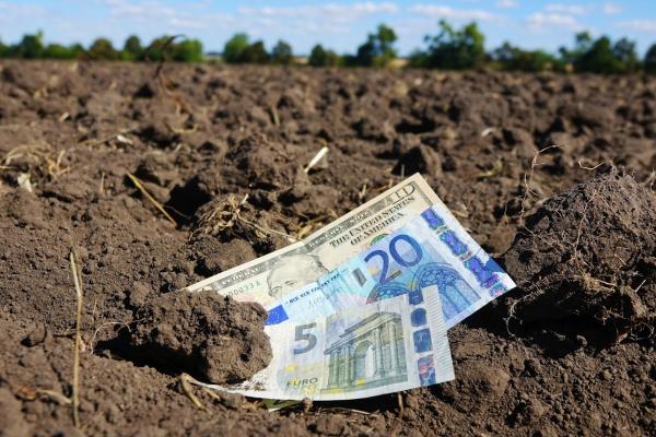Небезпеки продажу землі в Україні