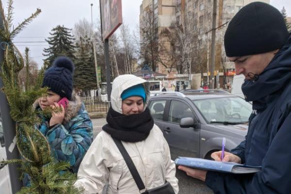 «Ялинкове браконьєрство»: У Львові штрафують продавців нелегальних ялинок
