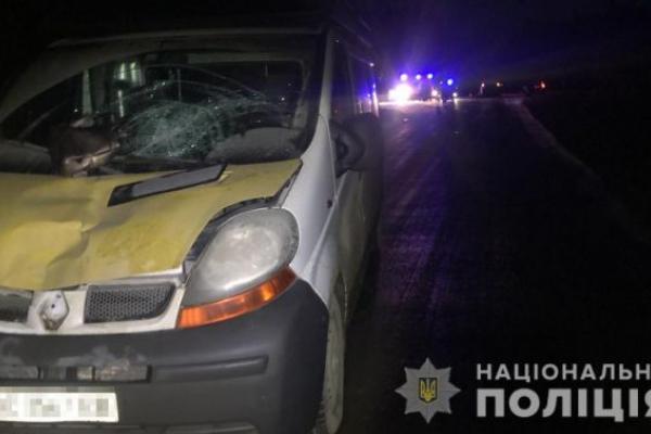 На Львівщині загинула під колесами автівки 15-річна дівчина