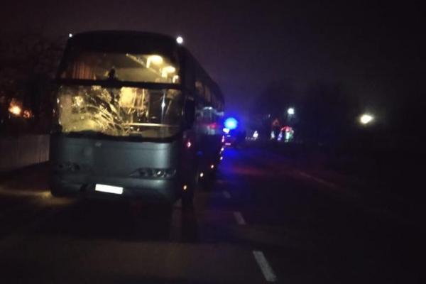На Львівщині пасажирський автобус міжнародного сполучення переїхав пішохода