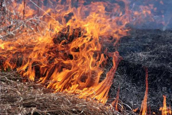 У Червонограді на пожежі виявлено тіло чоловіка