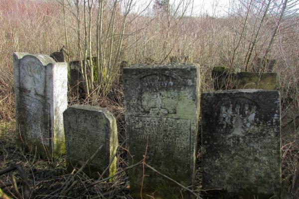 У Щирці єврейське кладовище заростає лісом (Фото)