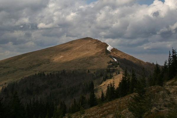 У горах Львівщини розшукали зниклих жителів Дрогобича