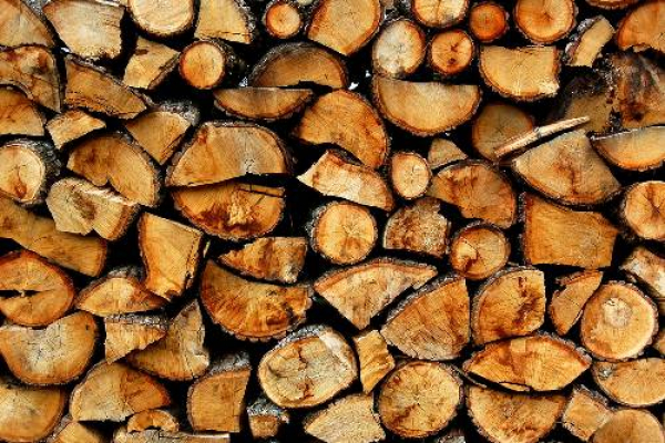 На лаві підсудних на Львівщині опинився чоловік, який незаконно зберігав зрубану деревину