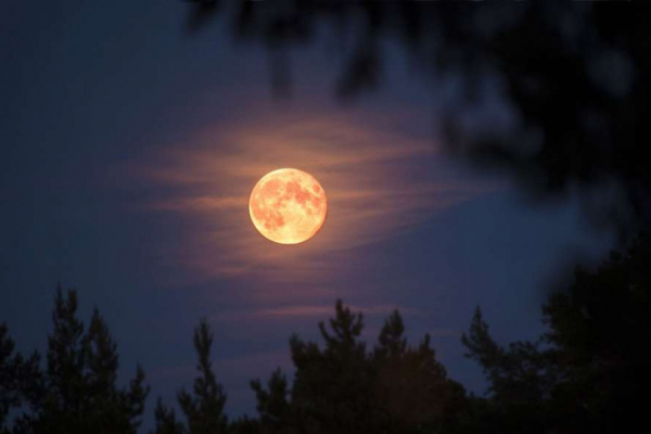 Рожевий Місяць 2020: на Львівщині жителі зафіксували унікальне явище (Фото)
