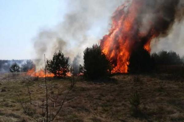 У Новояворівську знову горить сміттєзвалище (Фото)