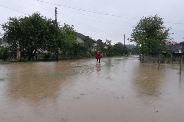 У Стрийському районі затопило село Заріччя