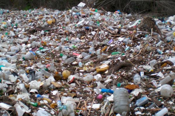 Львівське сміття на звалищі під Києвом завдало збитків на 200 млн