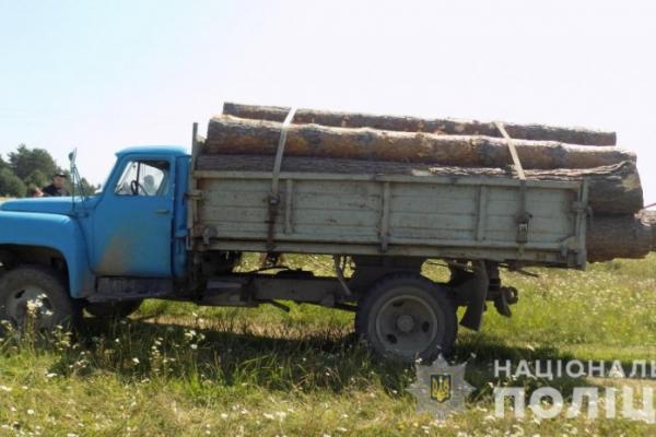 У Яворівському районі зловили вантажівку, завантажену нечипованою деревиною