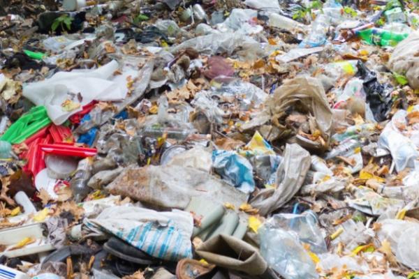 На Львівщині виявлено майже 400 несанкціонованих сміттєзвалищ