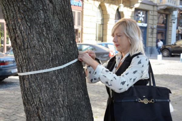 У дерев Львова з'являться паспорти