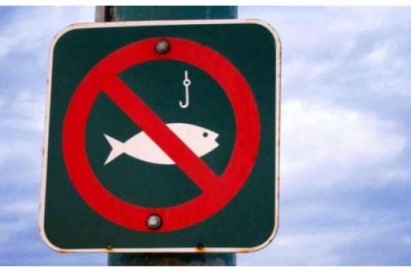 З 1 листопада на Львівщині заборонений вилов риби у зимувальних ямах