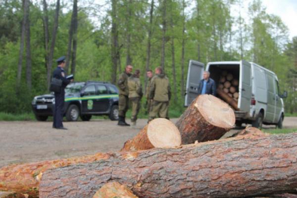 17 тис грн і «ЗІЛ»: на Турківщині покарали чоловіка за крадіжку деревини
