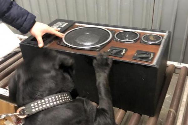 У поштовому відправленні службовий собака винюхав понад 500 пачок сигарет