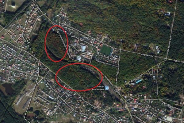 На Львівщині суд забрав ще 15 соток лісу у незаконних власників