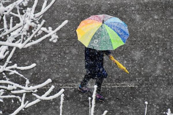 Синоптики попередили про складні погодні умови на Львівщині