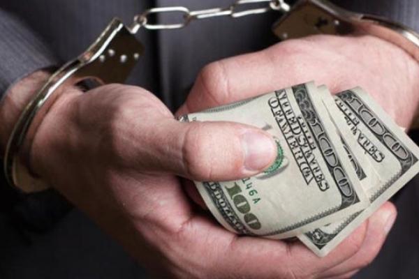 На Львівщині викрили корупціонерів: 1300 доларів США хабаря для митника за махінації з «євробляхами»
