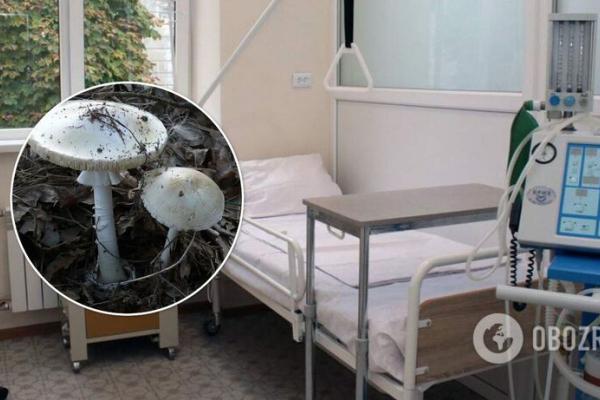 У Львові троє осіб потрапили до лікарні після вживання грибів