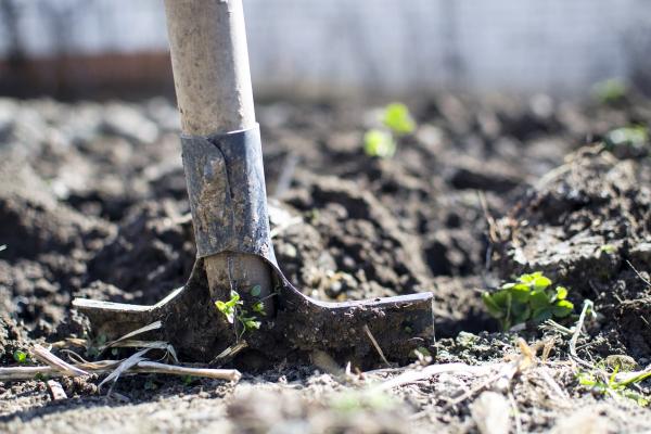 Батьків запрошують копати траншеї для туалетів в гімназії на Львівщині