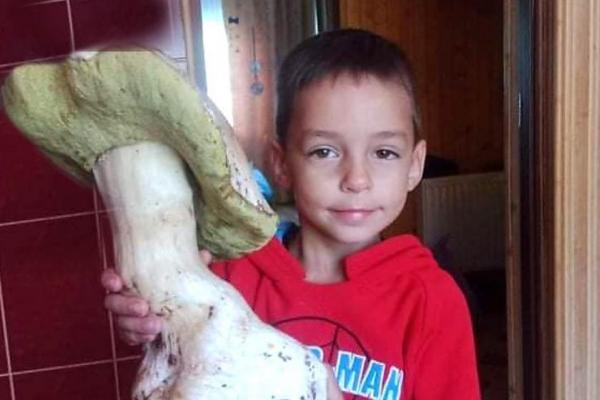 На Львівщині знайшли велетенський гриб